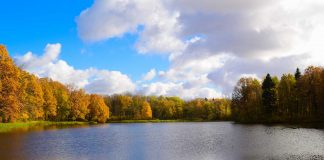 A small lake in autumn on a partly cloudy day.