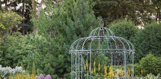 An open gazebo is surrounded by a lush garden full of green plants and colored flowers.
