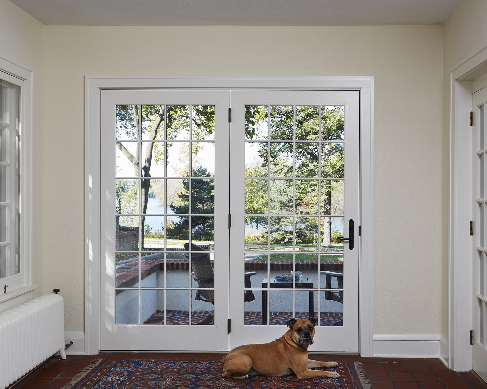 Dog sits in front entry way