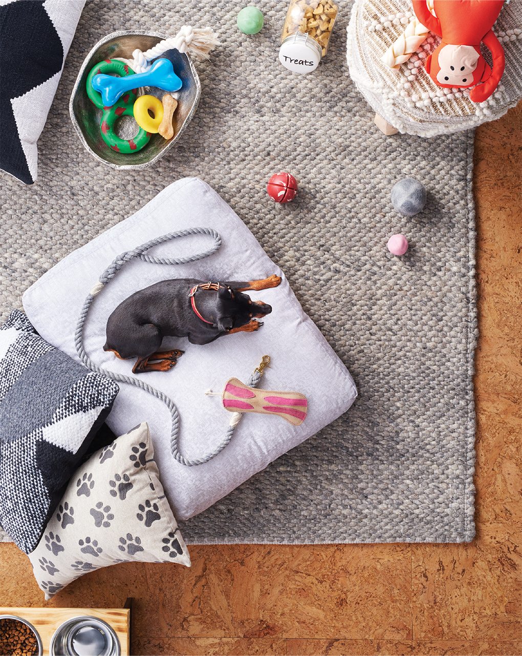 A top-down view of a miniature pinscher laying on a pillow next to holiday gift ideas for your pet den, including a rug, metallic bowl, treat container, leash, dog bed and more.