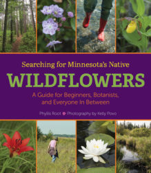 Searching for Minnesota's Native Wildflowers book cover.